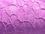 Фиолетовая структура +576 грн